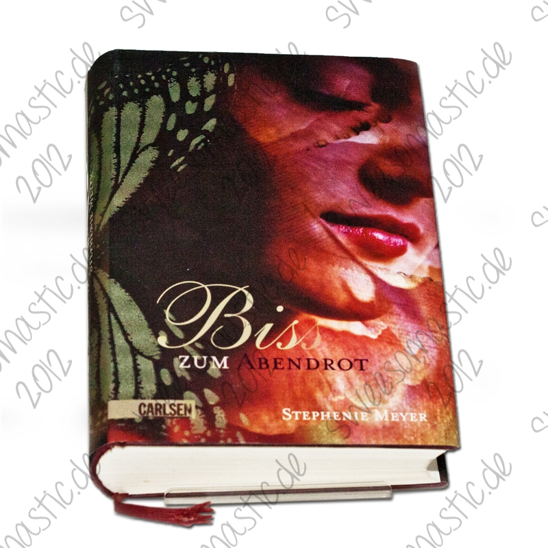 Twilight_Buch_1